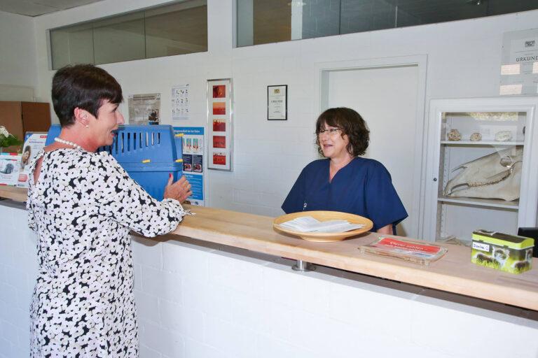 Tierarztpraxis Peter Stelzer, Berg bei Starnberg, Empfang