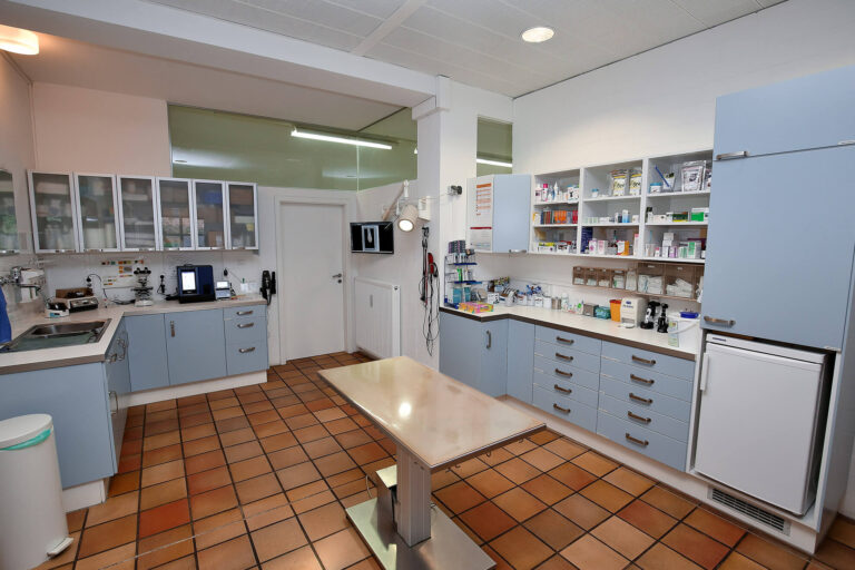 Tierarztpraxis Peter Stelzer, Berg bei Starnberg, Behandlungsraum 1