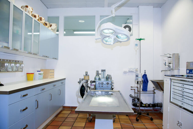Tierarztpraxis_Stelzer-Berg-Starnberg-Chirurgie-HPH_1069