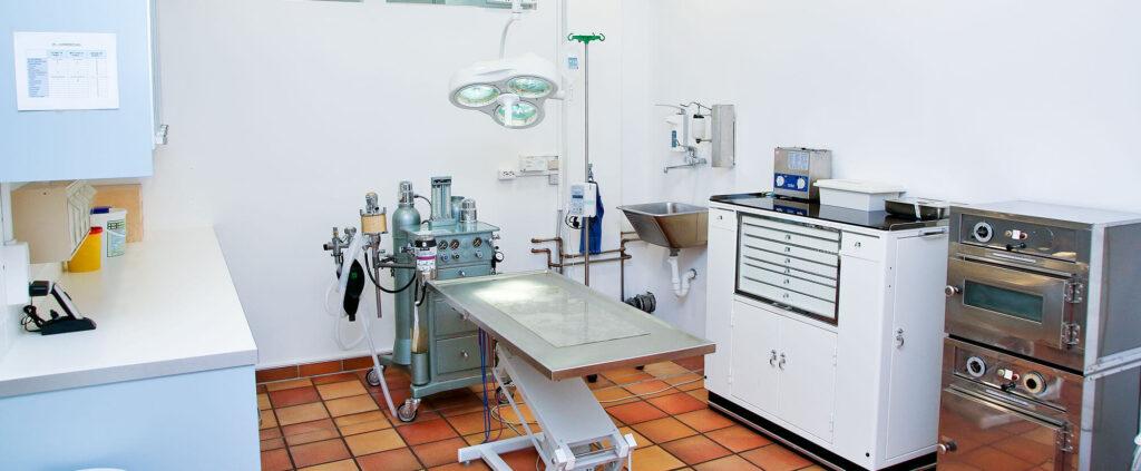 Tierarztpraxis Dr. Stelzer in Berg, Starnberg, Chirurgie
