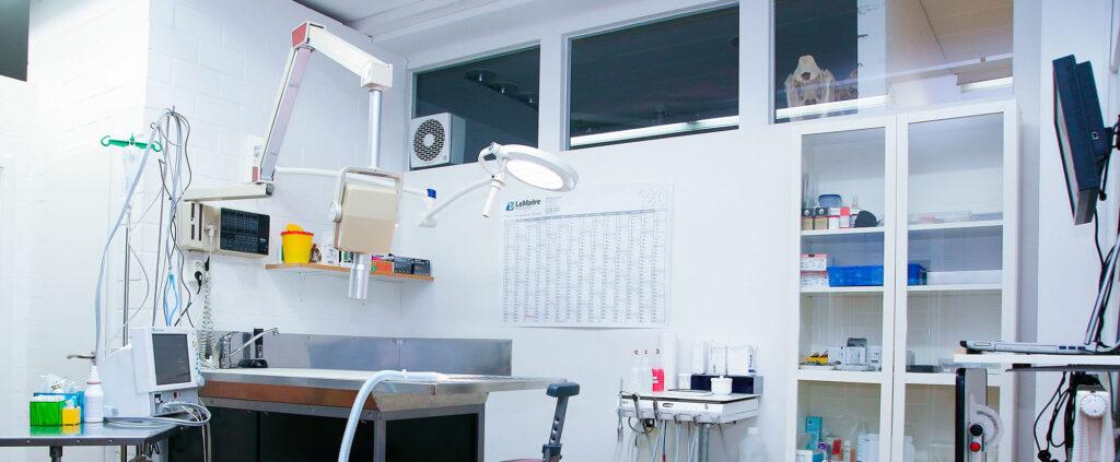 Zahnstation Tierarztpraxis. Dr. Stelzer, Berg, Starnberg